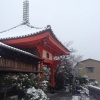 yuki20142