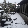 yuki20143